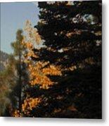 Sierra Autumn Moonset Metal Print