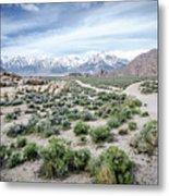 Sierra Nevada Front Metal Print