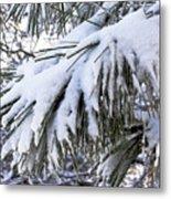Sierra Winter Metal Print