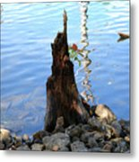 Sign Of Life Metal Print