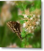 Sign Of Spring Metal Print