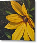Sign Of Summer Metal Print