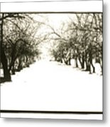 Silenced By The Snow Metal Print