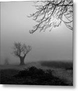 Silent Haze Metal Print
