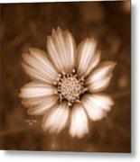 Silent Petals Metal Print