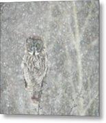 Silent Snowfall Portrait II Metal Print