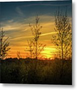 Silhouette By Sunset Metal Print