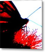 Silhouette Monarch With Red Metal Print