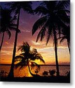 Silhouette Of Palm Tree On The Coast Metal Print