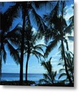 Silhouette Of Palms Metal Print