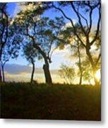 Silhouette Of Trees Metal Print