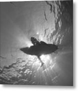 Silhouetted Metal Print
