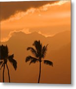 Silhouetted Palms Metal Print