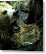 Silly Bears Metal Print
