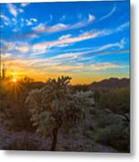 Silly Sunset Metal Print