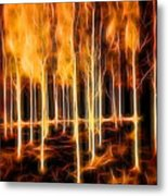 Silver Birches Flaming Abstract  Metal Print