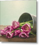 Silver Container With Fresh Tulips Metal Print