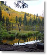 Silver Lake 3 October 2008 Metal Print