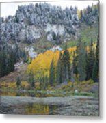 Silver Lake Dusted Metal Print
