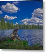 Silver Lake Metal Print