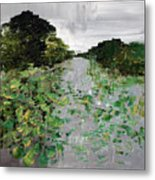 Silver Lake Norfolk Botanical Garden 2018-17 Metal Print