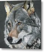 Silver Shadow Metal Print