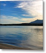 Silvery Reflection Metal Print