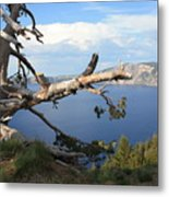 Silvery Tree Over Crater Lake Metal Print
