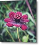 Simple Perfection  Metal Print