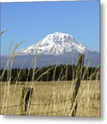 Mount Adams Metal Print