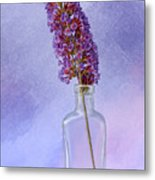 Simply Purple Metal Print