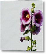 Simply Stated Metal Print