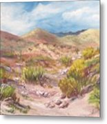 Simply The Desert Metal Print by Jean Ann Curry Hess