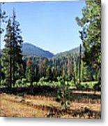 Simpson Meadow - Sierra Metal Print