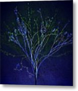 Since Love Grows Within You Metal Print