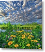Sing For The Day Metal Print