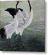 Singing Cranes Metal Print