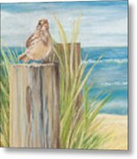 Singing Greeter At The Beach Metal Print