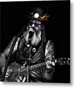 Singing Strings Metal Print