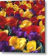 Singing Tulips L062 Metal Print
