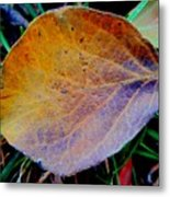 Single Brown Leaf Metal Print