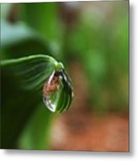 Single Drop Of Rain Water  Metal Print
