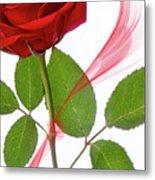 Single Red Rose Metal Print