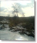 Single Tree Close By The Ice Lake.1 Metal Print