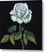 Single White Rose Metal Print