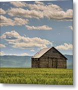 Singled Out Metal Print