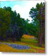 Sister's Hill Country Backyard Metal Print