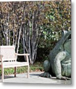 Sitting And Watching The Frog Metal Print