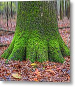 Six Green Fingers Metal Print