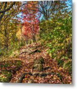 Skeleton Of Graveyard Fields Metal Print